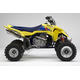 450 QUADRACER 2010 LT-R450L0(E19)